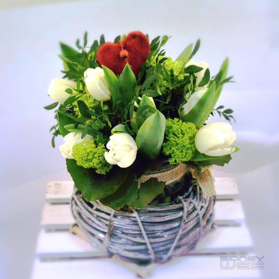 Fleur - marguerite-fleuriste -Minerve-web-Studio